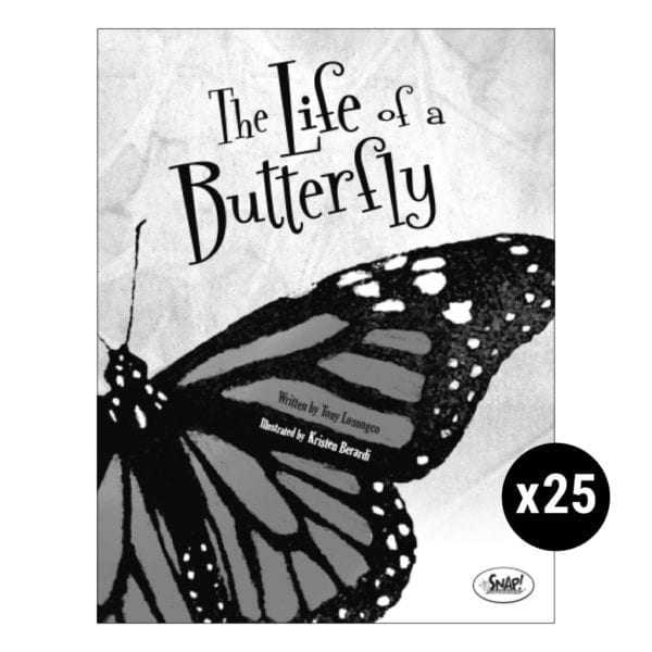 The Life of a Butterfly Set